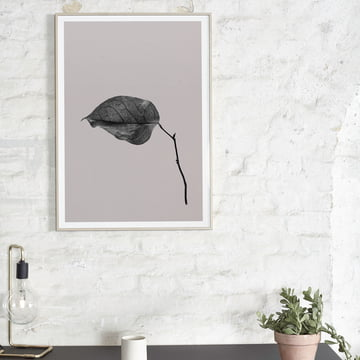 Paper Collective - Sabi Leaf 03, 50 x 70 cm Above the Table