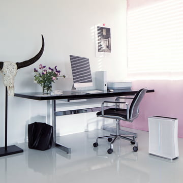 Roger Air Purifier by Stadler Form in the Office