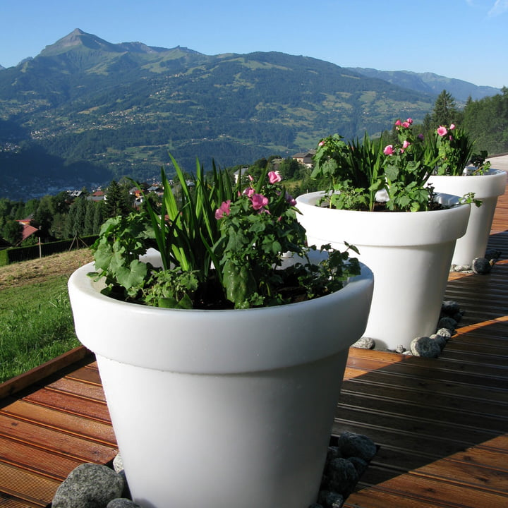 Bloom Pot without lighting, mountains in the background