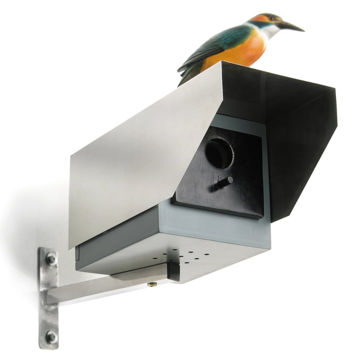 Donkey Products - Big Brother Bird House