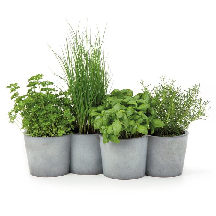 Konstantin Slawinski - Potpot Herbage Pot, anthracite
