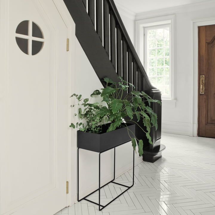 Plant Box by ferm Living in Black