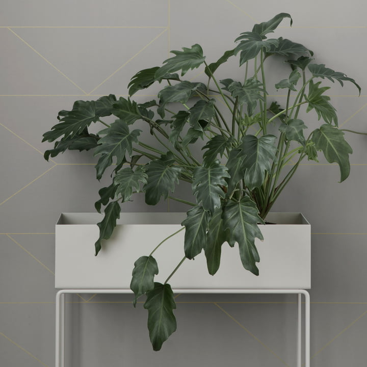 Plant Box by ferm Living in White
