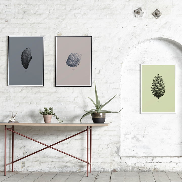 Paper Collective - 1:1 Oyster (dark grey) / Nature 1:1 Pine Cone (light green) / 1:1 Hailstone (everest grey)